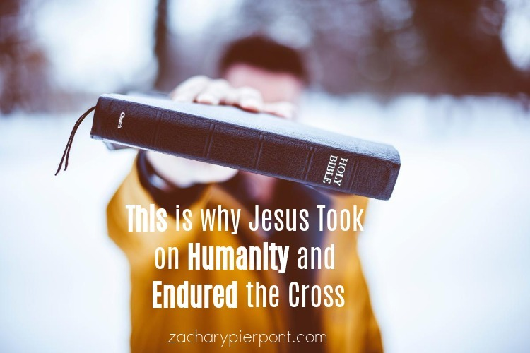 Reformed Theology This is Why Jesus Took On Humanity And Endured the Cross  Calvinism